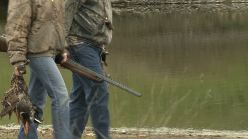 A pair of duck hunters carry their catch and shotguns.