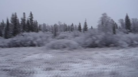 IRKUTSK, RUSSIA- 22 Oktober 2015:The view from the train window on the forest after the first snowfall