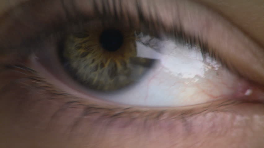 Close-up of woman's eye #1254241