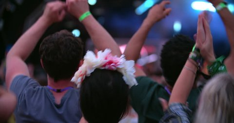 Back view of friends in the audience at a music festival