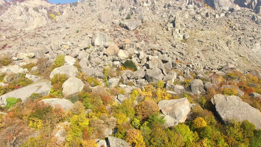 Aerial View Autumn Forest in Mountain - HD stock footage clip