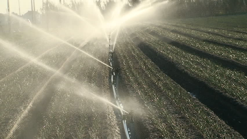 Sprinkler irrigation for watering cultivated field