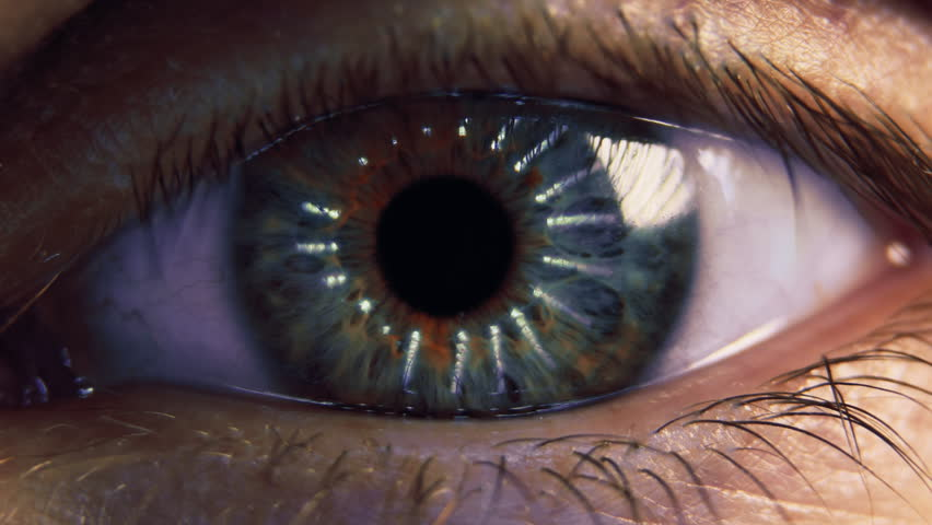 Eye iris and pupil macro. Reflected moving light rays into the human eye with zoom. Closeup #13045841