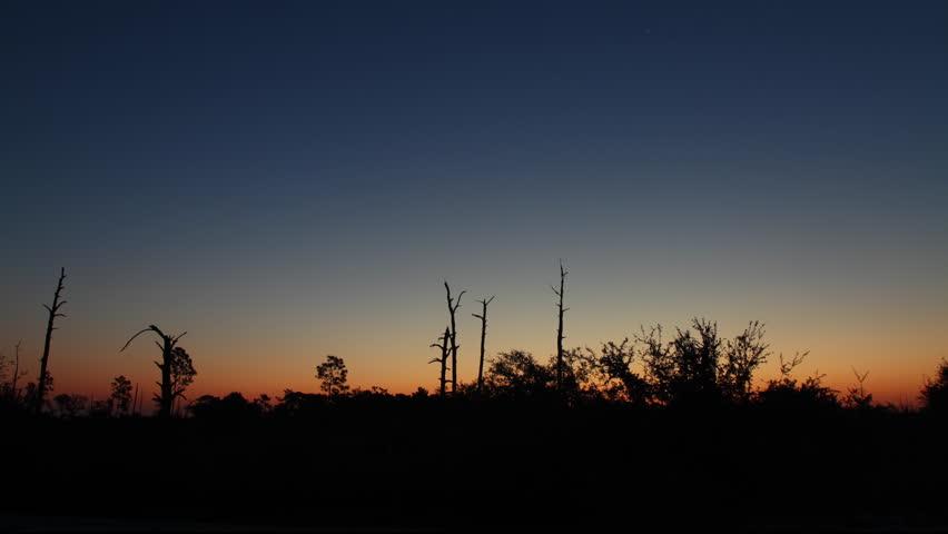 First Light of Dawn