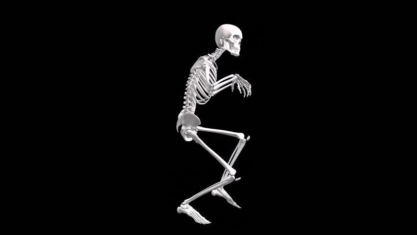 yoga firefly pose of human skeletal. stock footage video 19179199, Skeleton