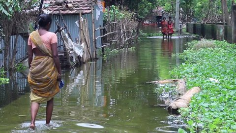 NABADWIP DHAM, INDIA, July 12th, 2015: Woman wading through water in the street after a flood in Bengal, India.