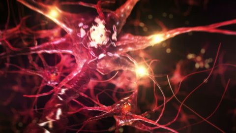 Journey through a neuron cell network inside the brain. Red. Loopable. Flying across a neuronal network, electric impulses passes by it. Synapse.