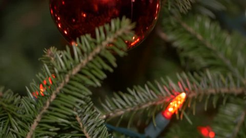 tilt up Chirstmas tree to red bulb-close up