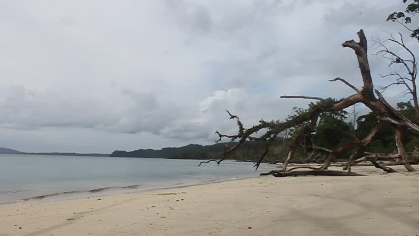 Tropical paradise, Andaman Islands, Havelock, Elephant Beach | Shutterstock HD Video #1391701