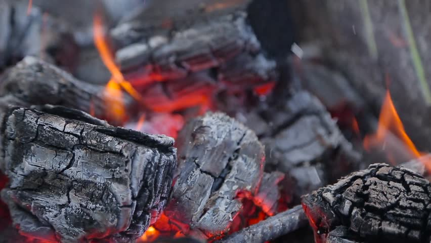 Burning fire and bright coals. #14391082