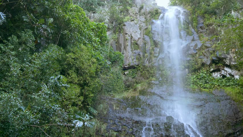 Misty Green Forest Nature River Beautiful 1ziw: Footage Hawaii Waterfall Green Forest Nature Island Water