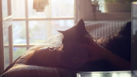 Beautiful romantic brunette woman lying on bed at the windows in slowmotion and takes her cat in hands. 1920x1080. hd