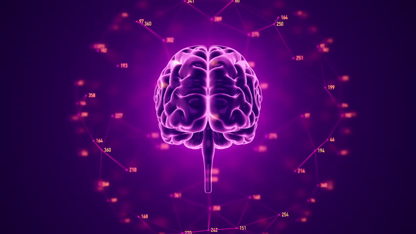 Abstract background with animation of rotation Human brain with net of data from numbers around. Backdrop of science or social technology. Animation of seamless loop. | Shutterstock HD Video #14884921