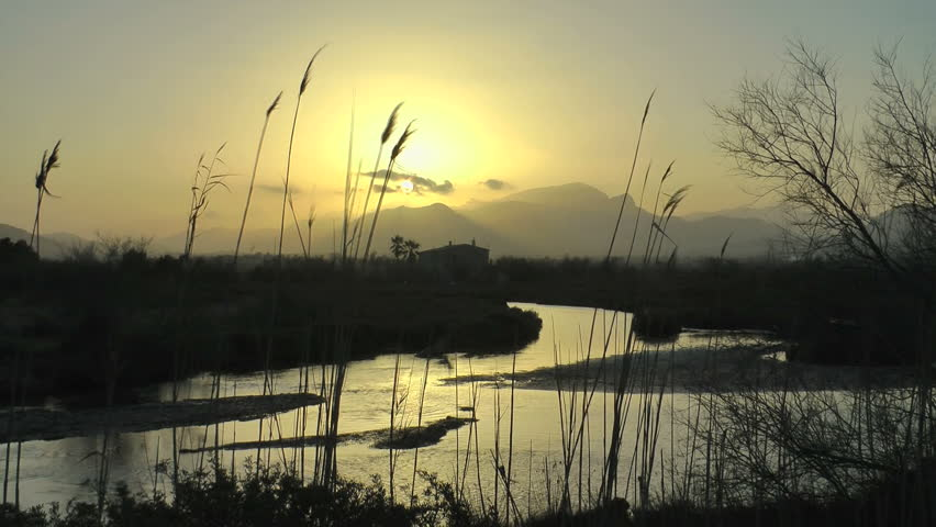 Majorca, sunset in Parc Natural de s'Albufera close to Alcudia #15004351