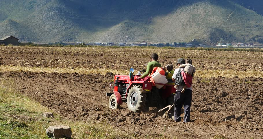 Oct 12,2015:4k tibetan people use farm tractor Arable land in shangrila yunnan,china. gh2_10446_4k