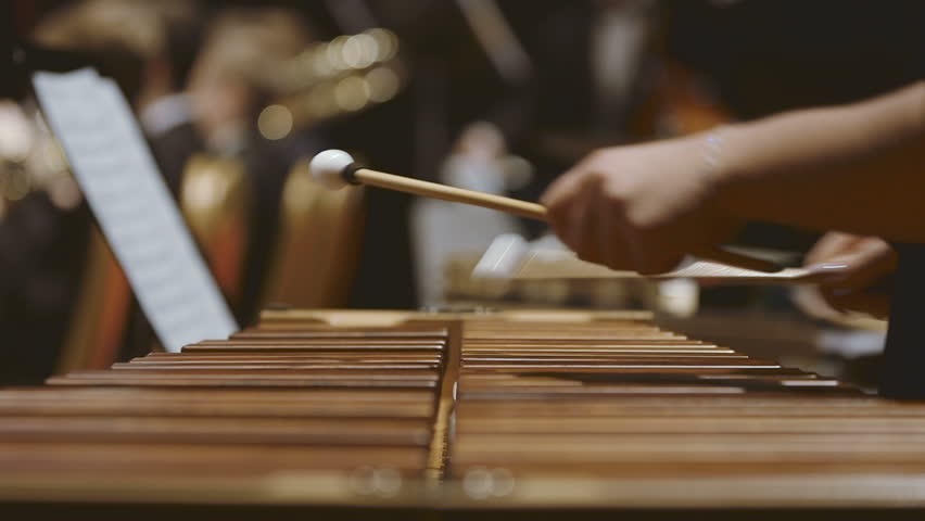 Musician playing xylophone in orchestra. Close-up shot of musician playing xylophone. Female is performing in orchestra. She is hitting drumsticks on percussion instrument during event.