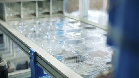 Create one-off package and pack. Goods manufactured of plastic packing from environmentally friendly and safe for food storage materials. Work on high performance and precision machinery. Inside