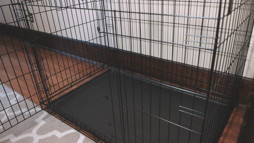 A Large Empty Pet Kennel in a Home. camera moves left on an empty large pet kennel in the corner of a house room