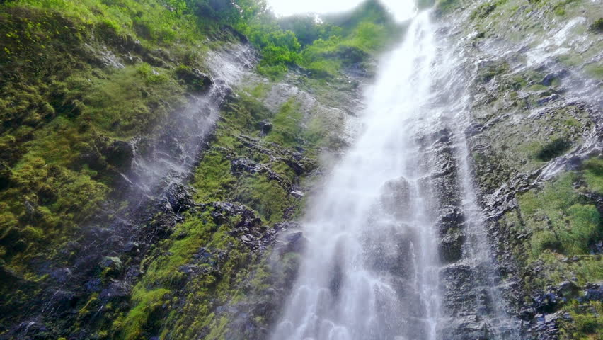 River flows through tropical rain forest jungle in maui for Waterfall environment