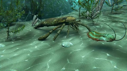 An animation of Eurypterus chasing a Trilobite on a sea bottom. Eurypterids are related to arachnids and include the largest known arthropods to have ever lived (460 to 248 million years ago).