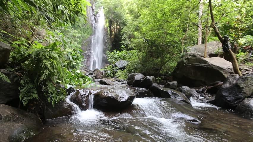 Hidden rain forest waterfalls in Les Village, Bali. HD footage | Shutterstock HD Video #15886831