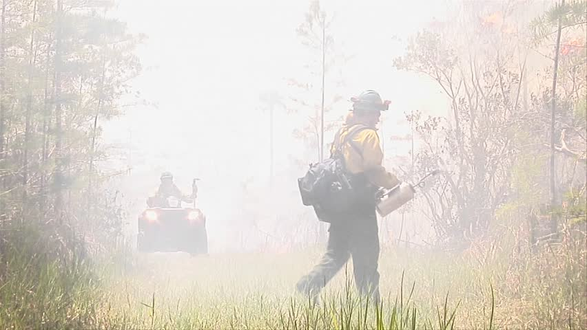 Firefighters conduct a prescribed fire circa 2009 in the Everglades.