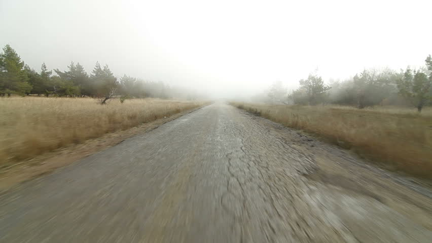 Driving in fog on country road