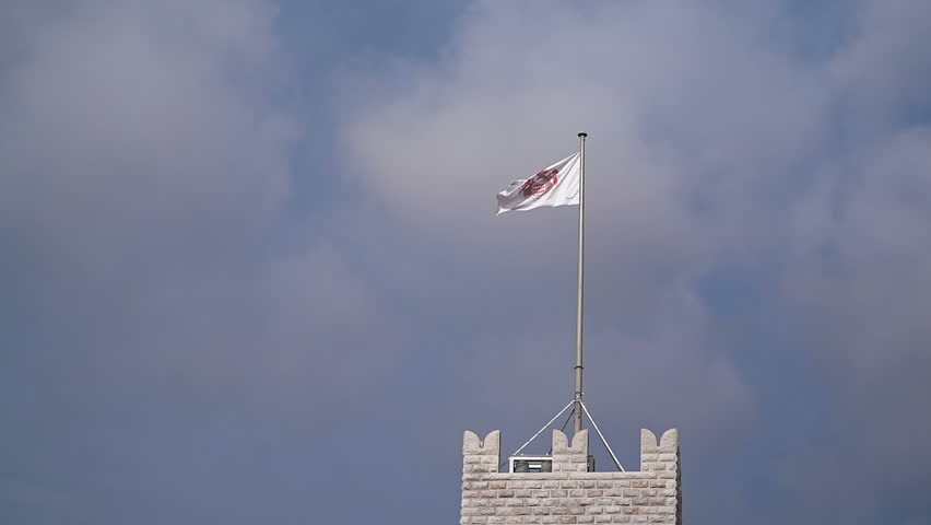 Flag of Monaco waving in the wind with flagpole #16031182