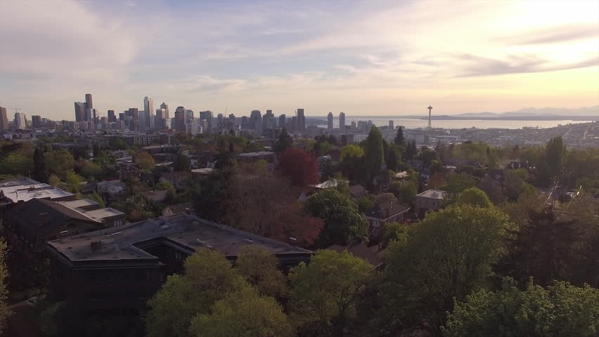 Fly Over Trees to Reveal Downtown Seattle Buildings in Epic View of Skyline