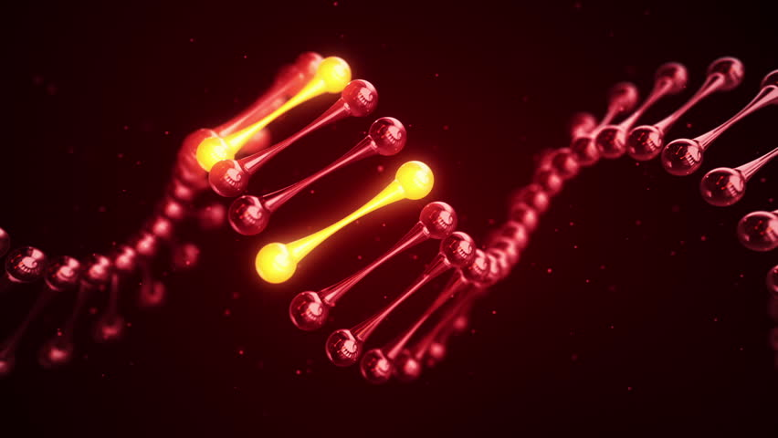 Abstract scientific background with animation of rotation DNA helix from glass with glowing individual elements. Animation of seamless loop. | Shutterstock HD Video #16145371