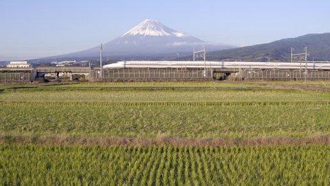 Japan, Honshu, Mount Fuji, Shinkansen Bullet Trains passing through harvested rice fields below the snow capped volcano