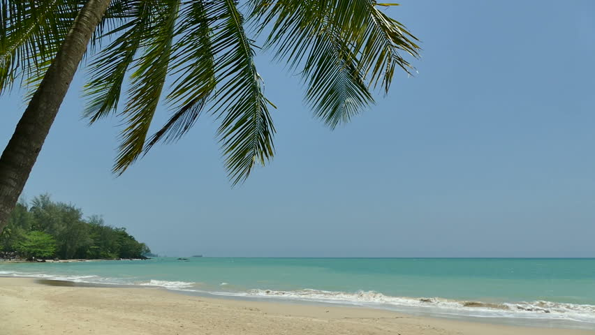 Tropical beach and sea for vacation background | Shutterstock HD Video #16445011