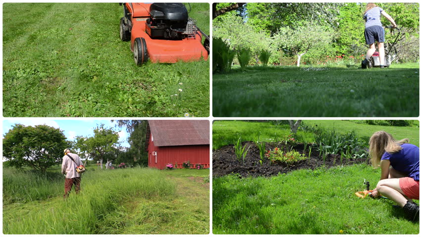 Gardener woman mow and watering lawn and flowers in garden. Man trim high grass near rural homestead. Montage of video footage clips collage. Split screen. White round corner frame. 4K UHD 2160p | Shutterstock HD Video #16503601