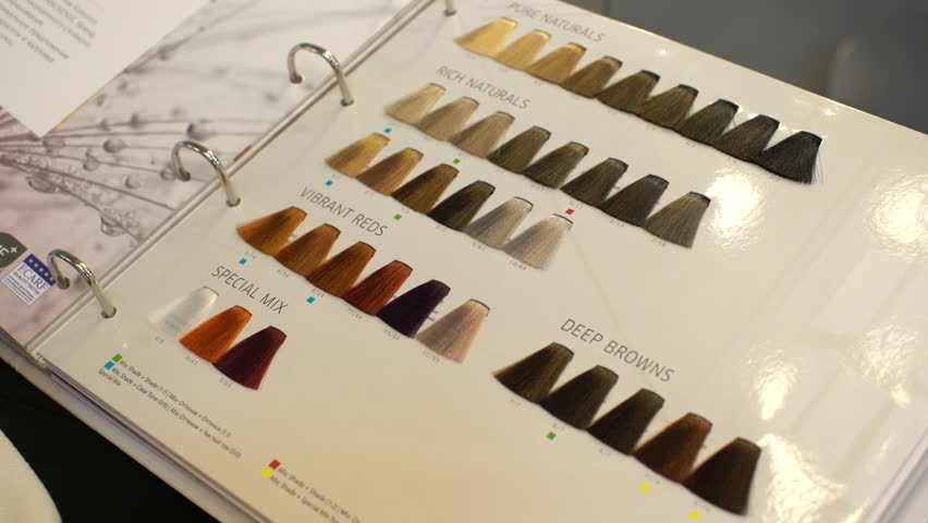 In The Big Wide Book Presents Samples Of Paint For Hair A Book With
