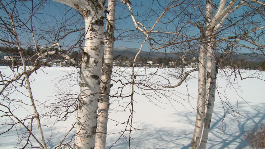 Shot of village through branches and across snowy field - HD stock footage  clip