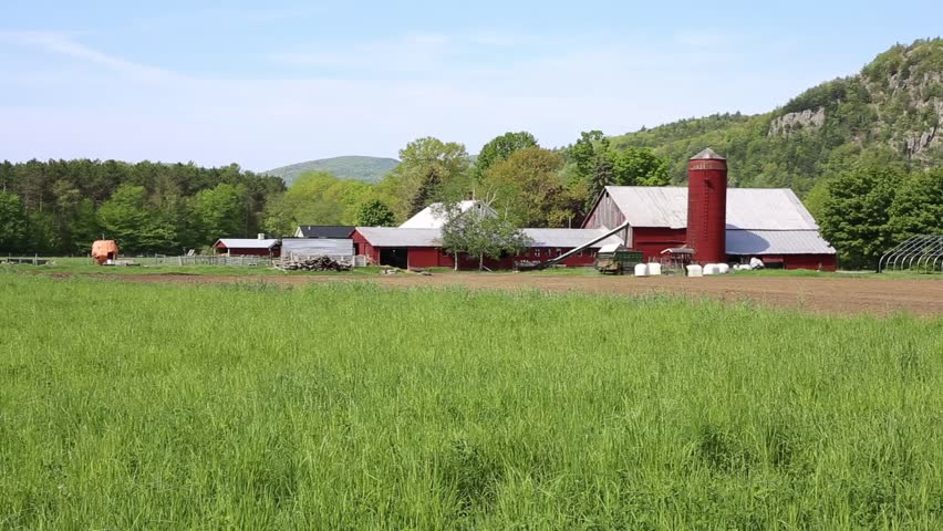 Traditional wood framed red barns and farm buildings in the country side of New Hampshire.