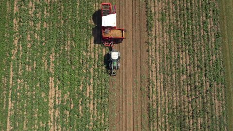 Aerial - Harvesting potatoes with modern potato-digger trailer attached to a tractor