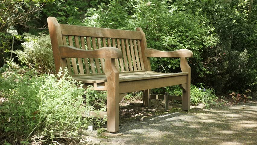 Video Bench Part - 36: In Natural Environment Wooden Bench In The Park Slow Motion 1920X1080  FullHD Video - Lonely Bench