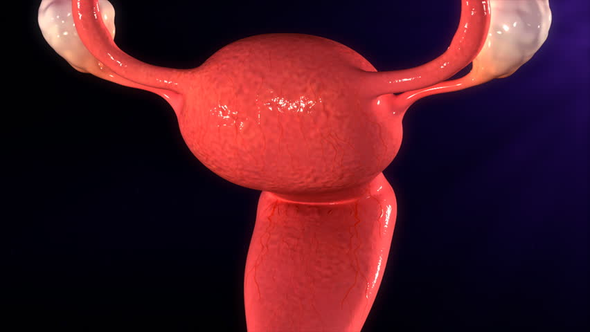 Endometrial tissue