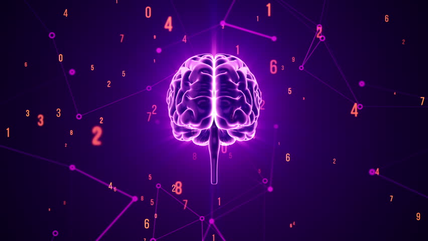Animation of rotation human brain with flying data around. Animation of seamless loop. | Shutterstock HD Video #17343601