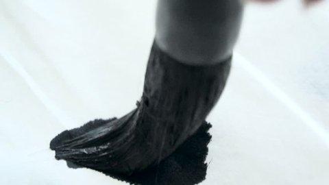 Chinese calligraphy Brush ink