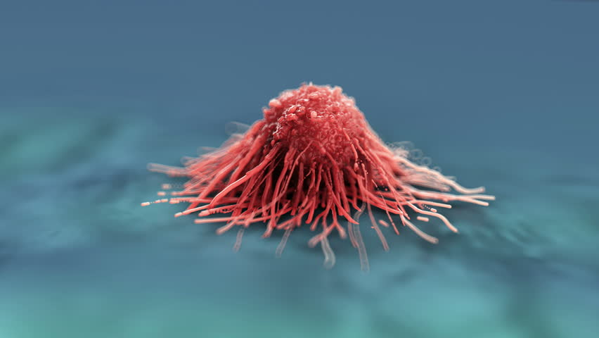 3D rendered close up of a cancer cell in a microscopic view / cancer cell / cell , tumor