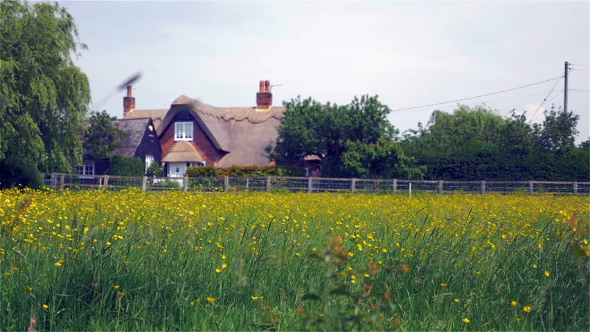Traditional English rural scene. Video footage of a rural spring England scene across a green meadow of wild flowers towards a traditional English cottage with thatched roof on a quiet country lane.