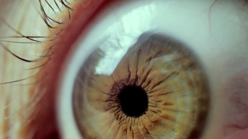 Close-up on an eye. horror looking eye. 4k, UHD video #17633761