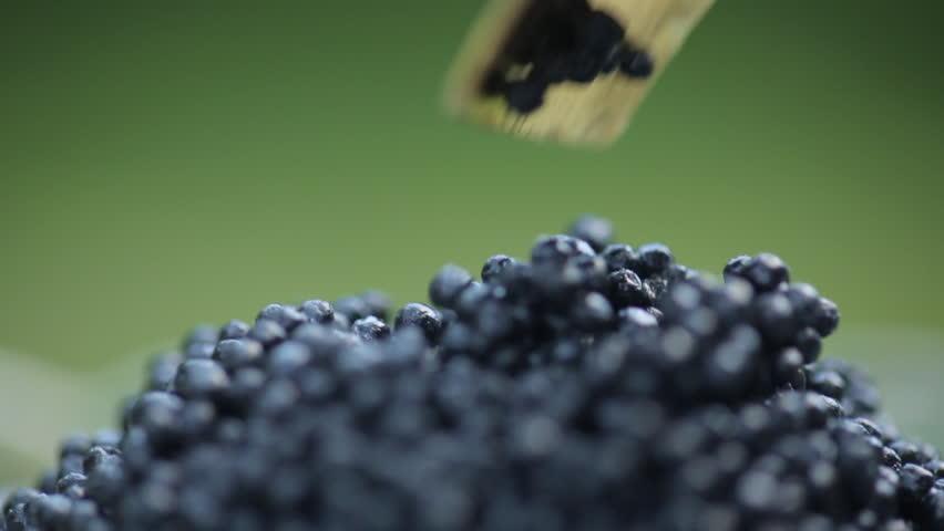 Black caviar in small round metal tin on ice | Shutterstock HD Video #17647111