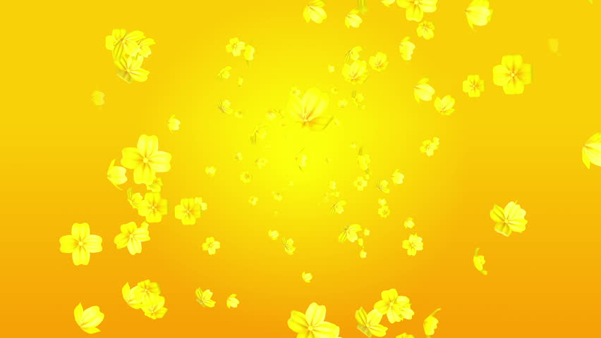 Spreading 3d Yellow Color Flower Stock Footage Video 100 Royalty Free 17647321 Shutterstock