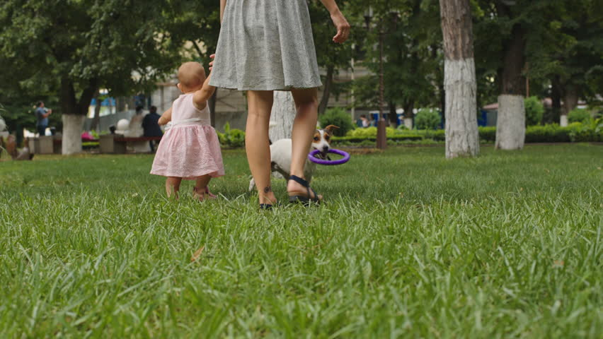 Woman with her little daughter go by the hand in the grass in a Park on a summer day | Shutterstock HD Video #17737621
