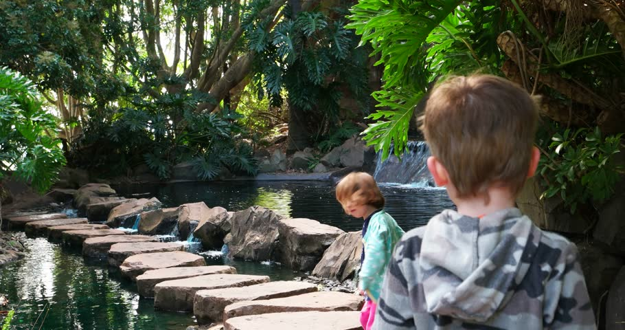 kids playing on waterfall stepping stones