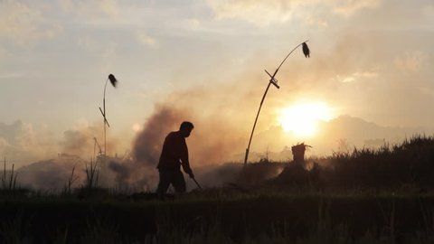 Silhouette of farmer burning stubble in rice field in Ubud Bali