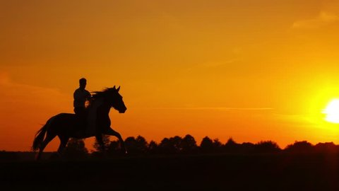 Horseman riding on hourse galloping on sunset in backlight, slowmotion.